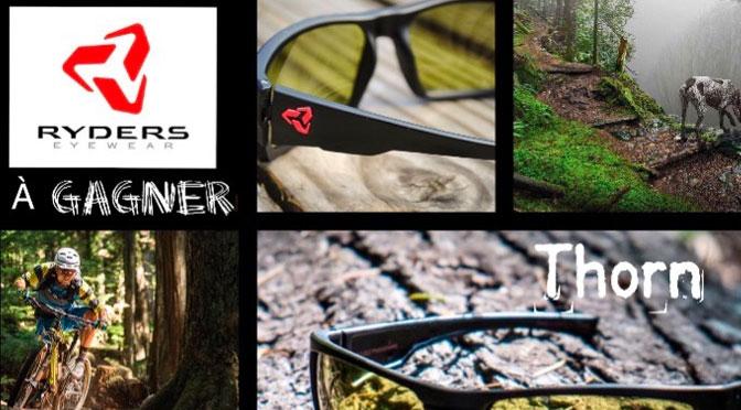 Concours Ryders Eyewear