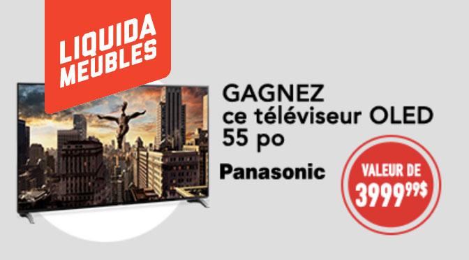 Téléviseur Panasonic Liquidameuble