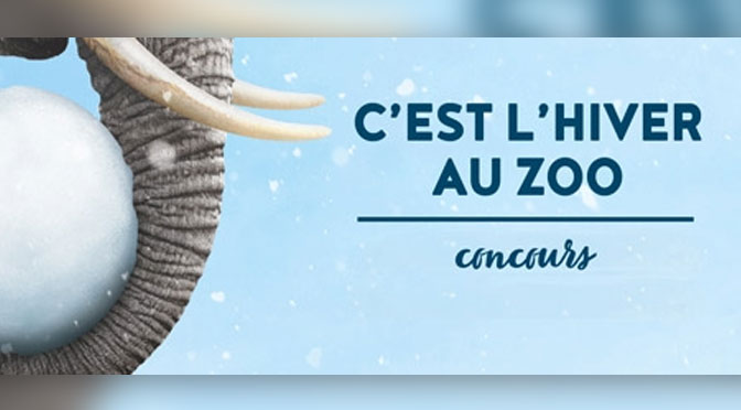 Concours zoo Granby Hiver
