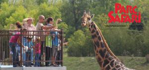 Concours Parc Safari 2019