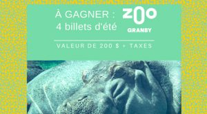 Concours Zoo Granby 2020