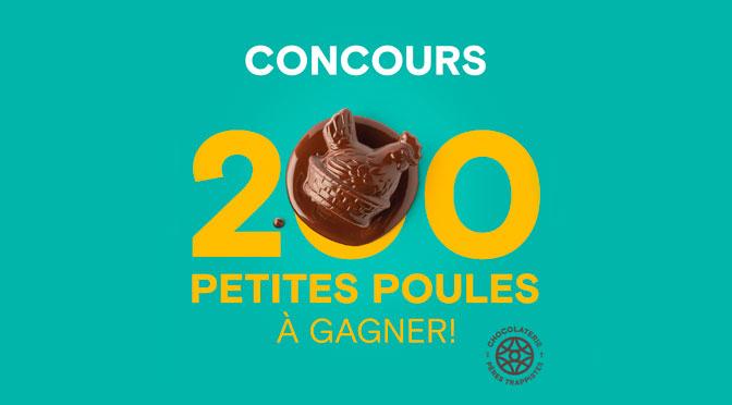 Concours 200 petites poules en chocolat
